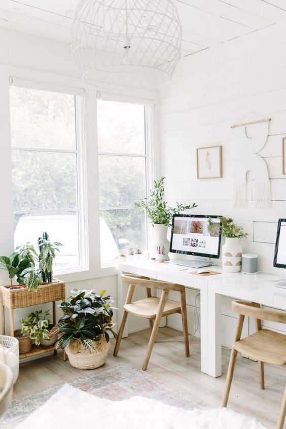 fresh workspace with plant decors