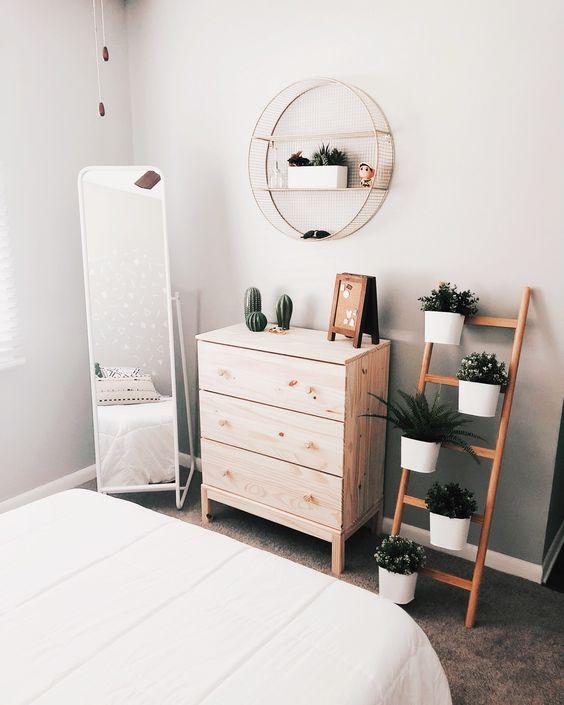 cactus bedroom plant decor