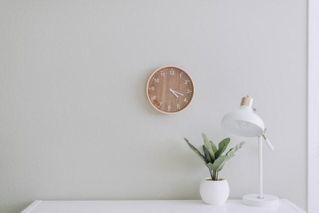 minimalist room indoor plants decors