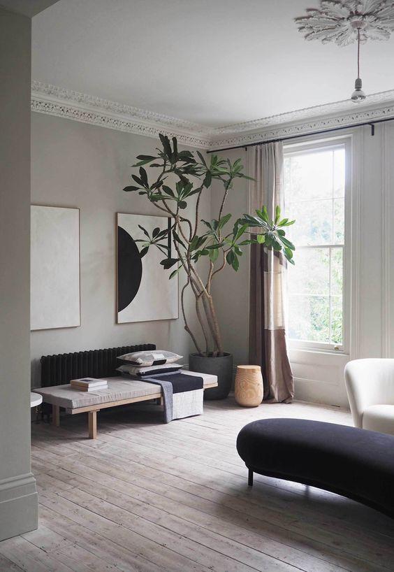gray room nuances