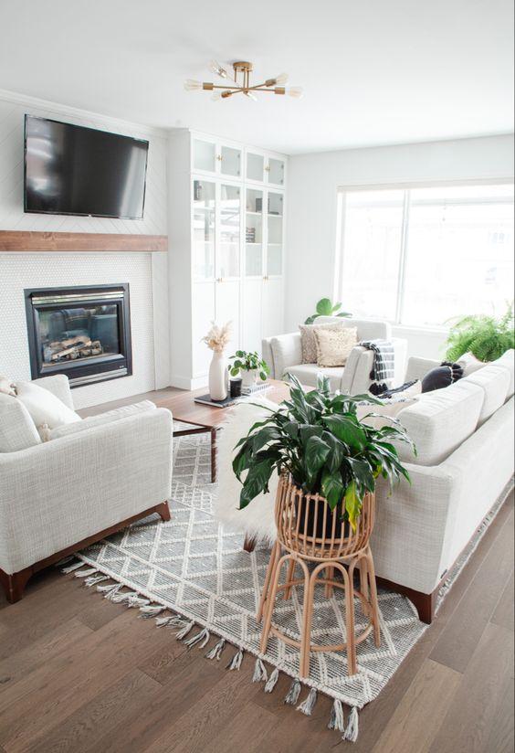 fresh small living room decors