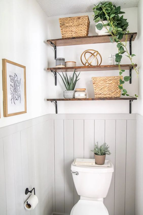 plant in the bathroom