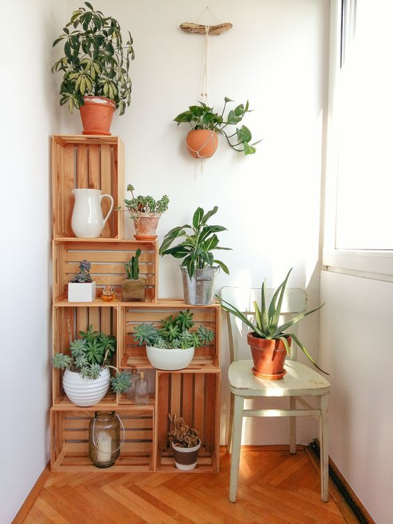 plant shelf home DIY ideas