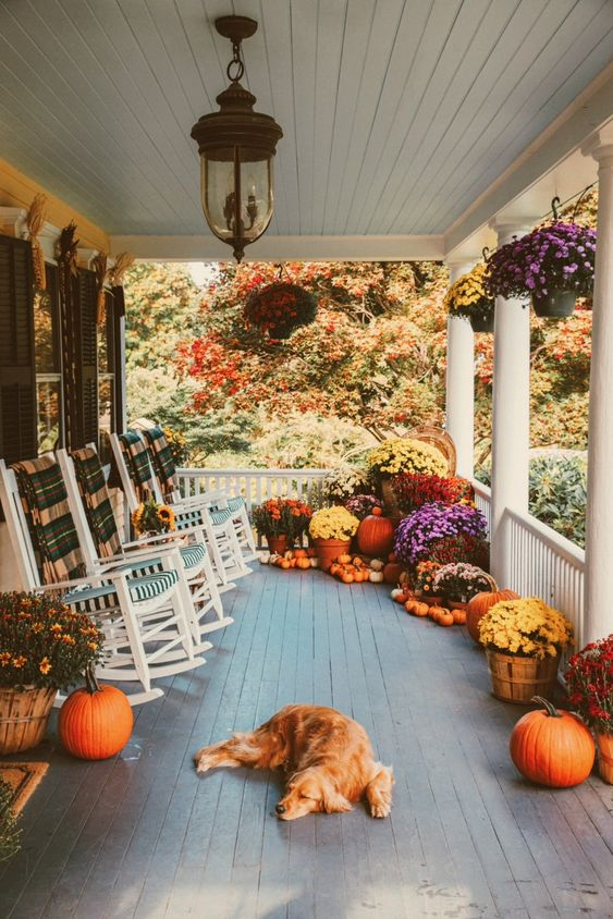 pumpkins and flowers decors
