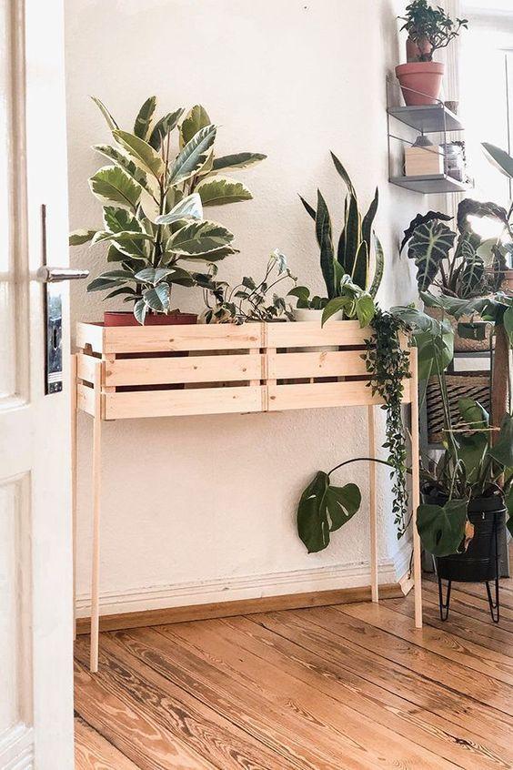 pot plant DIY